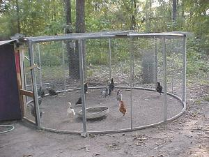 Farm show magazine latest farming agriculture news for How to build a chicken pen cheap