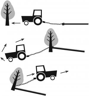 Simple Way To Clear Small Trees Brush